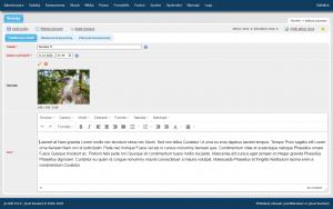 Editace novinky, WYSIWYG editor